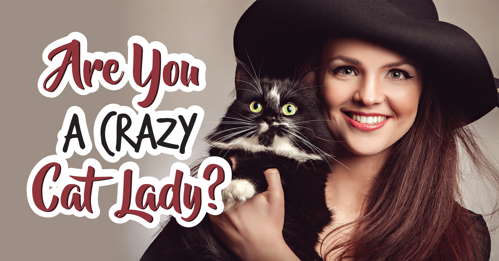 how to play cat lady