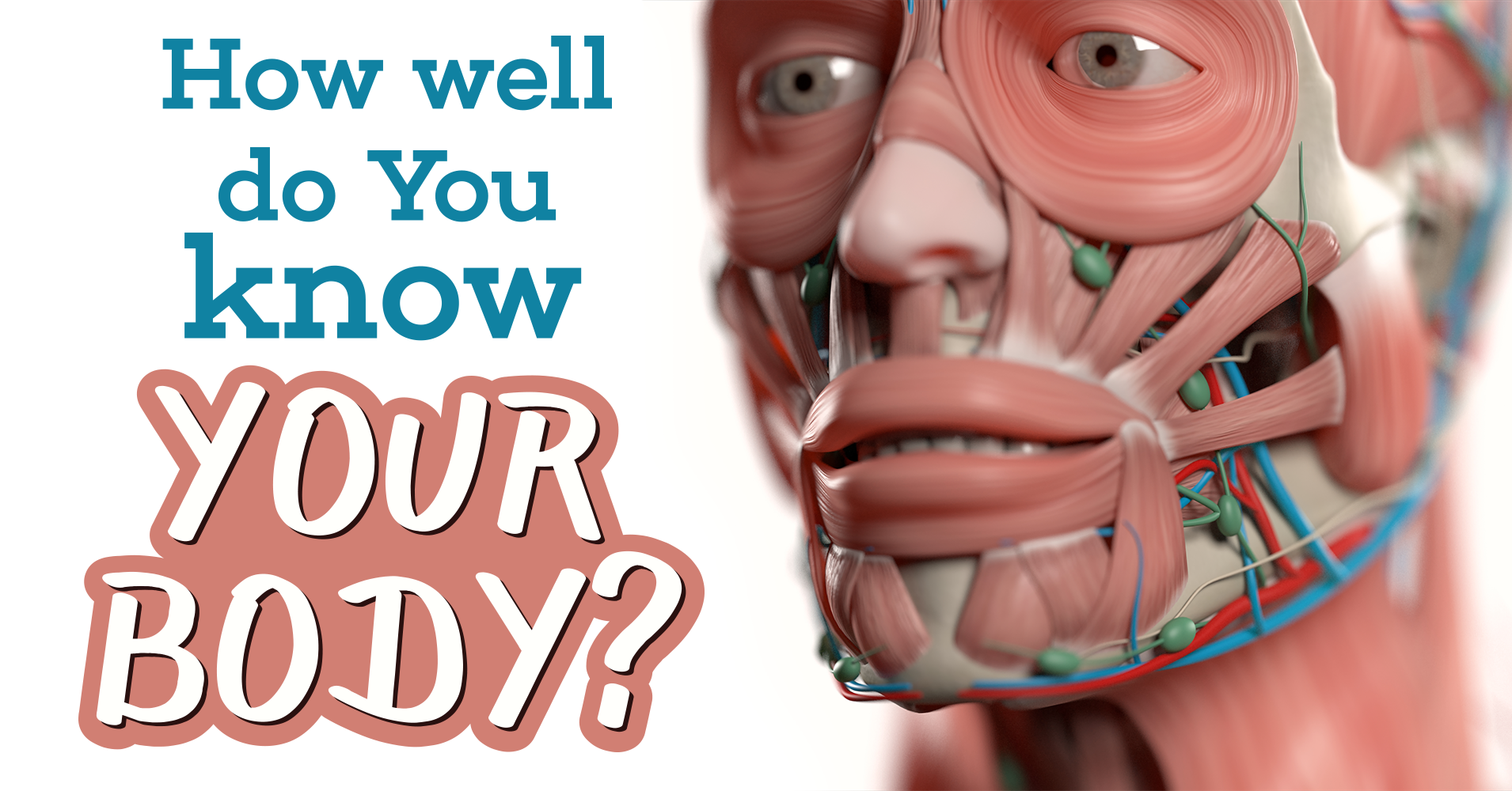 How Well Do You Know Your Partner Quiz: How Well Do You Know Your Body?