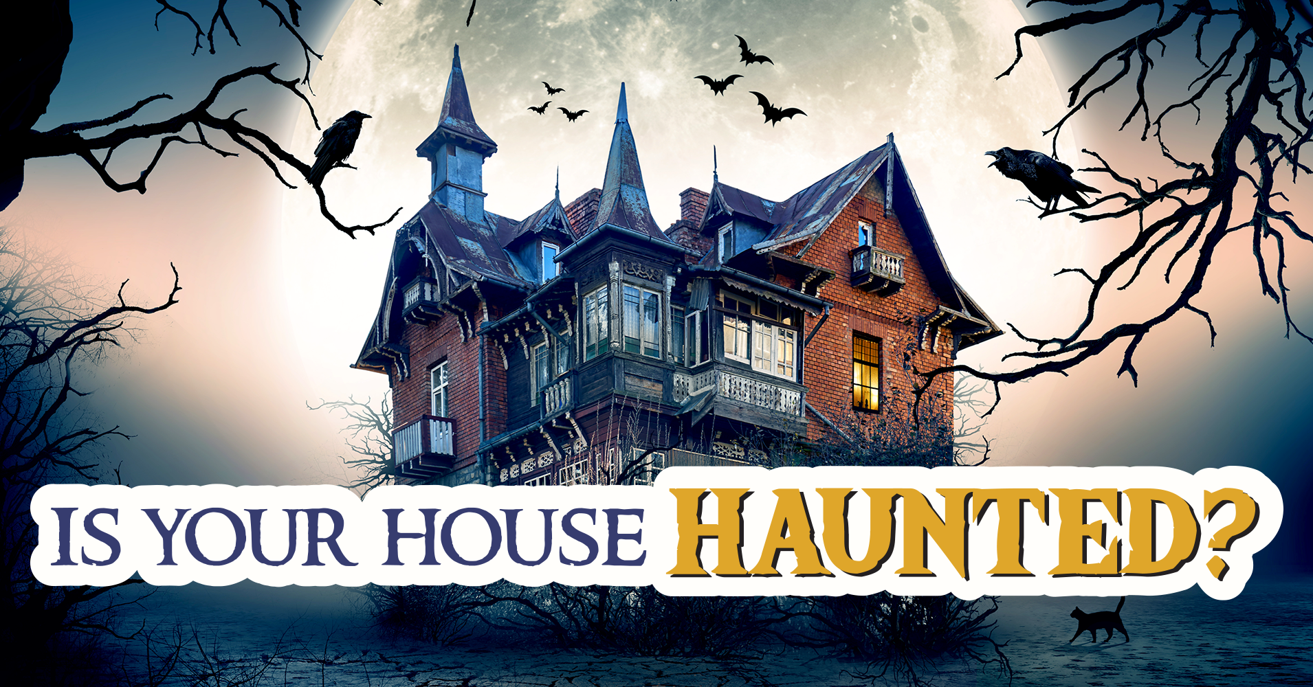 How To Know If Your House Is Haunted Quiz House Plan 2017