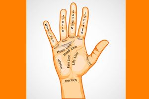 What Does Your Palm Reveal About Your Per...