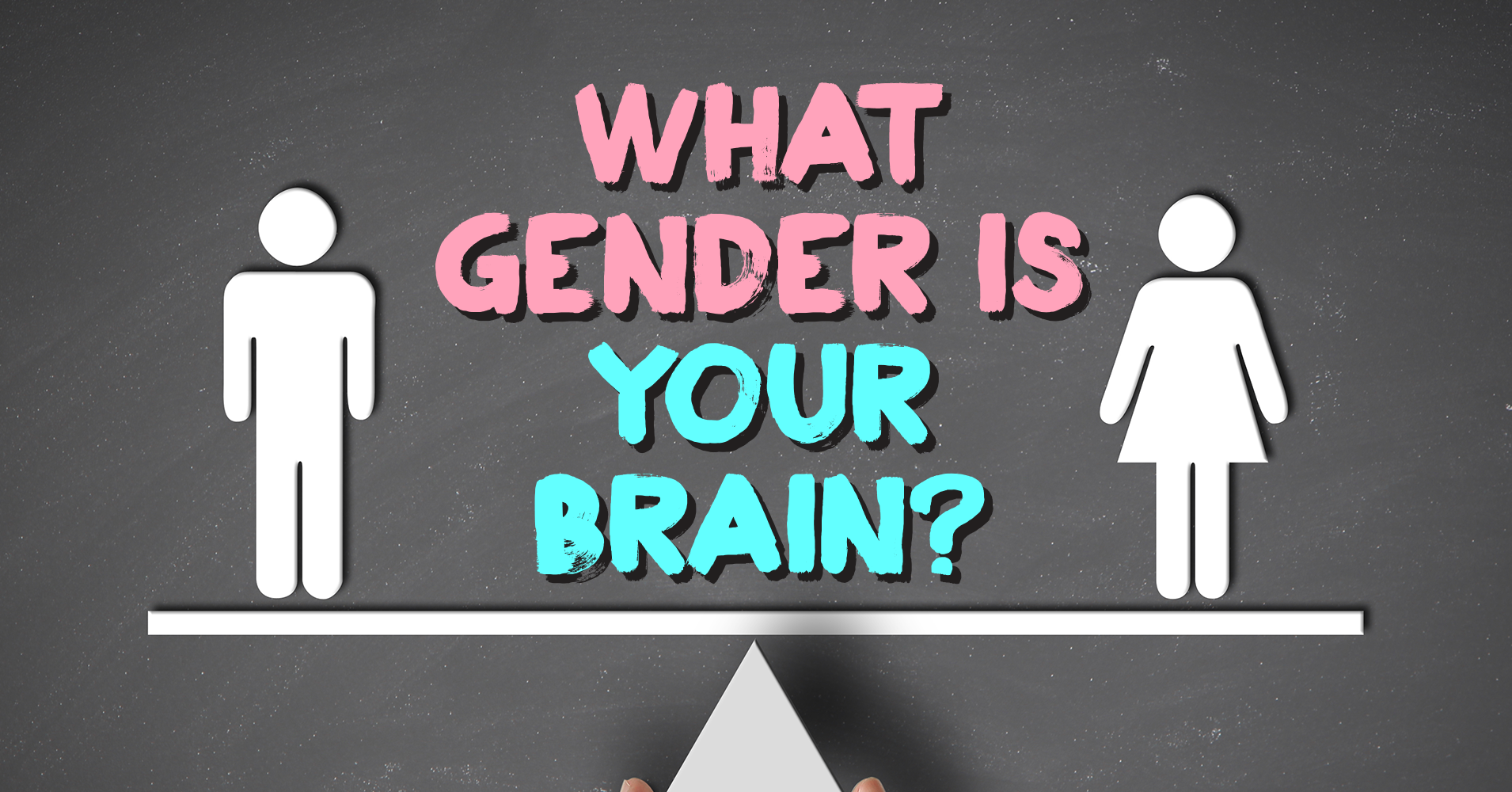 What sex is your brain quiz