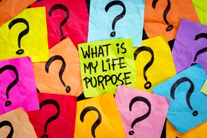 What Is My Purpose In Life?