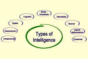 What Type Of Intelligence Do I Have?