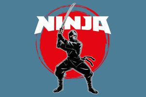 What Type Of Ninja Are You?
