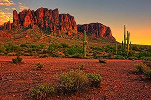Which City In Arizona Is Best For You?